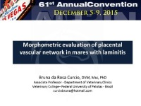 Morphometric Evaluation of Placental Vascular Network in Mares With Laminitis