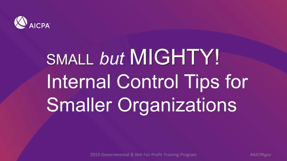 Small but Mighty - Internal Control Tips for Smaller Organizations icon