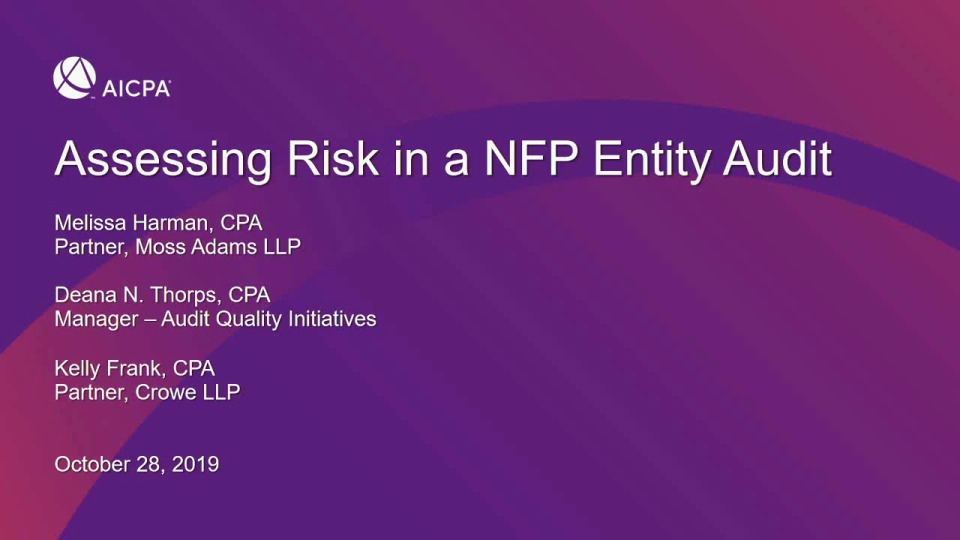 Assessing Risk in a Not-For-Profit Entity Audit icon