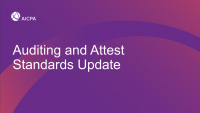 NAA2002. Auditing and Attest Standards Update