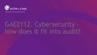 Cybersecurity - how does it fit into audit?