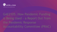 How Pandemic Funding is Being Used - a Report Out from the Pandemic Response Accountability Committee (PRAC)