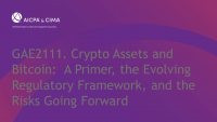 Crypto Assets and Bitcoin:  A Primer, the Evolving Regulatory Framework, and the Risks Going Forward