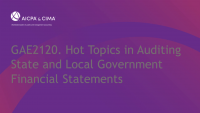 Hot Topics in Auditing State and Local Government Financial Statements icon