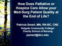 How Does Palliative or Hospice Care Allow Your Med-Surg Patient Quality at the End of Life? icon