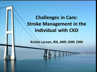 Challenges in Care: Stroke Management in the Individual with CKD icon