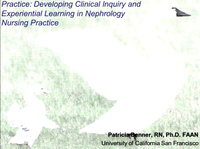 Clinical Wisdom and Interventions: The Skilled Know-How of Caring for Patients