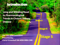 Chronic Kidney Disease: The Long and Winding Road to Pharmacological Understanding in CKD (Specialty Practice Session)