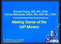 Issues in Management - Making Sense of the QIP Morass I icon