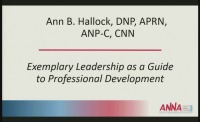 Tri-Level Practice of the Nephrology APRN: Exemplary Leadership as a Guide for Professional Development
