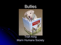 Bully Dogs: Evaluating, Selecting, and Training icon