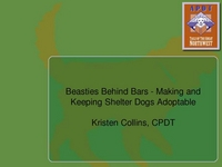 Beasties Behind Bars - Making and Keeping Shelter Dogs Adoptable icon