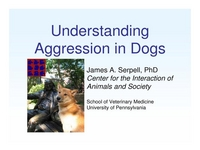 Understanding Aggression in Dogs icon