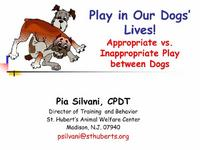 Appropriate Versus Inappropriate Play between Dogs icon