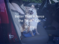 Better Than a Fence - The Wait icon