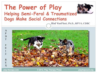 The Power of Play: Helping Semi-Feral and Traumatized Dogs Make Social Connections icon