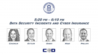 Data Security Incidents and Cyber Insurance icon