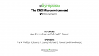 The CNS Microenvironment icon