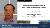 Short Talk: Adipose-Derived MMP14 Is a Key Player in Metabolic Health icon