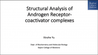 Short Talk: Structural Insights of Transcriptionally Active, Full‑Length Androgen Receptor Coactivator Complexes icon