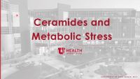 Ceramides and Metabolic Stress icon