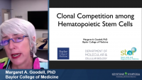 Clonal Competition Among Hematopoietic Stem Cells icon