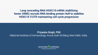 Long noncoding RNA HOXC10 mRNA stabilizing factor (HMS) recruits RNA binding protein HuR to stabilize HOXC10 3'UTR maintaining cell cycle progression icon