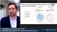 Short Talk: Control of Transcriptional Condensates and Gene Expression by Local Long Noncoding RNAs icon