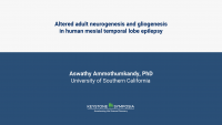 Altered adult neurogenesis and gliogenesis in human mesial temporal lobe epilepsy icon