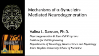 Mechanism of A-Synuclein-Mediated Neurodegeneration icon