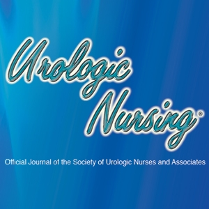The Effect of Implementing a Comprehensive Unit-Based Safety Program on Urinary Catheter Use