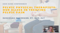 Pelvic Physical Therapists: Our Allies in Treating Pelvic Pain icon