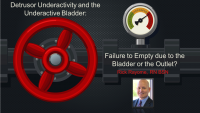 Detrusor Underactivity and the Underactive Bladder: Failure to Empty Due to the Outlet or the Bladder?