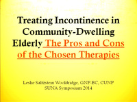 Treating Incontinence in Community-Dwelling Elderly: The Pros and Cons of the Chosen Therapies icon