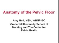 Sex, Skin, Bulges, and the Drugs and Devices to Improve Pelvic Floor Function icon