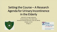 Setting the Course: A Research Agenda for Urinary Incontinence in the Elderly