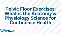 Pelvic Floor Exercises: What is the Anatomy & Physiology Science for Continence Health
