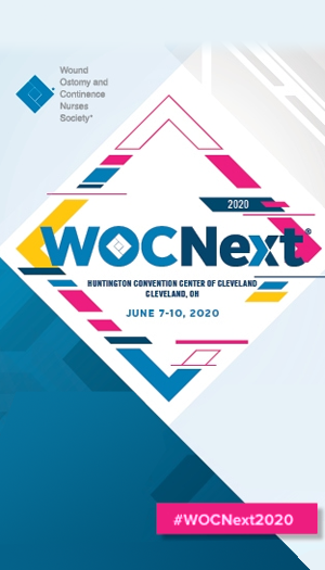 WOCNext 2020 Reimagined icon