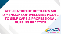 Application of Hettler's Six Dimensions of Wellness Model to Self Care & Professional Nursing Practice