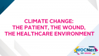 Climate Change: The Patient, The Wound, The Healthcare Environment